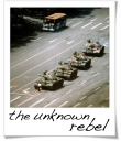 The Unknown Rebel - Jeff Widener - 1989